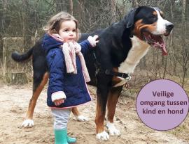 Omgang tussen kind en hond